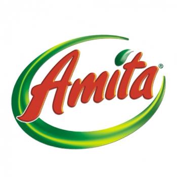 70ae1-amita_logo.jpg Team Promotion Clients